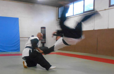 Hapkido. Martial Arts (Self-Defence)